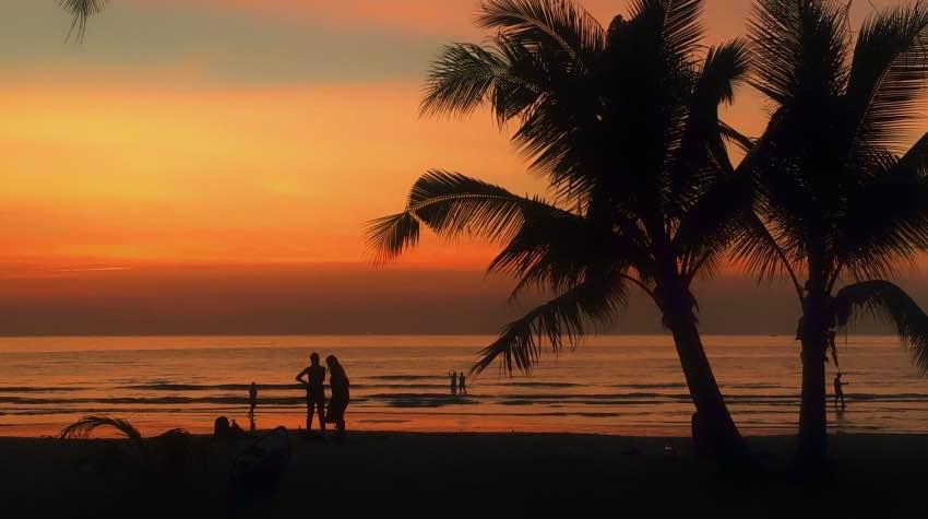 tramonto; spiaggia; palme; koh kood;